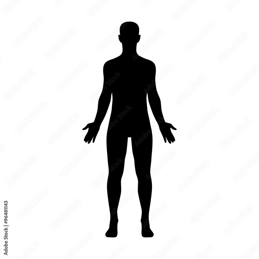 Männlicher menschlicher Körper, der einem erwachsenen Mann gehört ...
