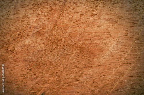 Poster Puma Natural brown wooden background.