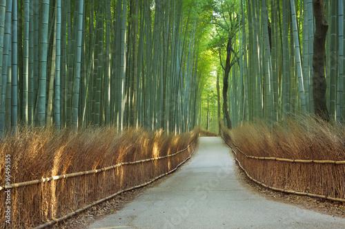 sciezka-przez-arashiyama-bambusowego-lasu-blisko-kyoto-japonia