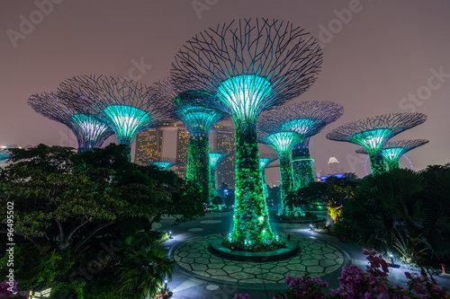 Supertree Grove in Gardens by the Bay,   Singapore Poster