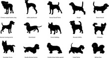 Breeds Of Dogs, Illustrations,...