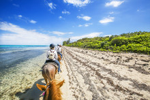 People Riding On Horse Back At The Caribbean Beach. Grand Cayman