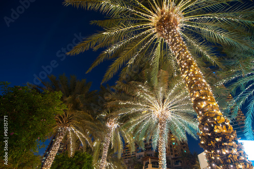 Tuinposter Palm boom christmas decoration background palm tree