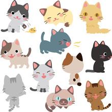 猫のイラストセット