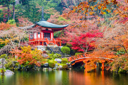 Kyoto, Japan at Daigoji Temple in Autumn. #96591715