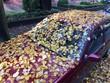 Auto mit Herbstlaub