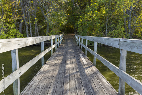 Fototapeta Bridge To Woods