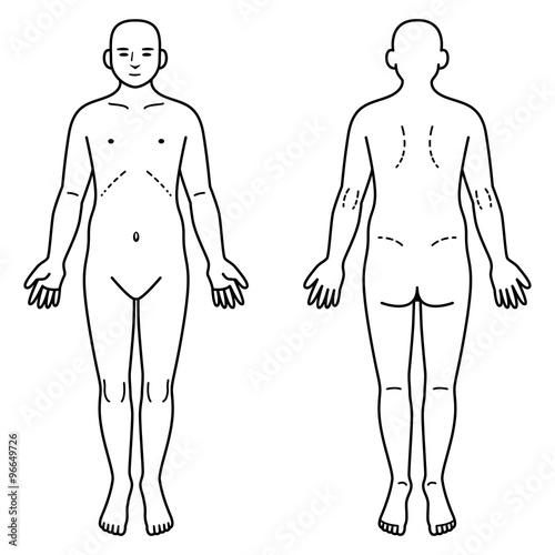 Fotografie, Obraz 人体 正面と背面