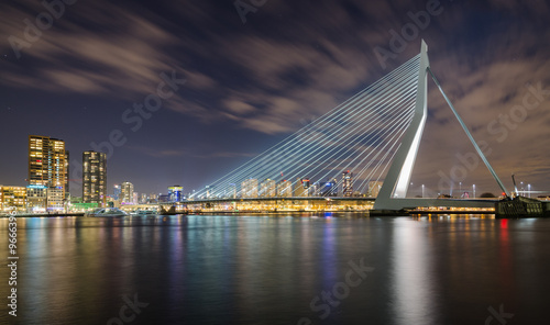 Canvas Prints Swan Erasmusbrug by Night