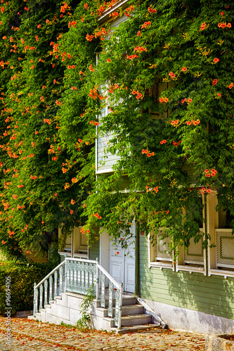 Photographie  The house wreathed with Campsis creeper on the Street of the Col