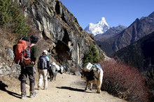 Sherpa And His Client Trekking...