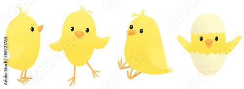 Slika na platnu Four little chicks