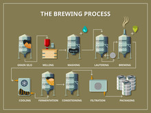 Brewery Process Infographic In...
