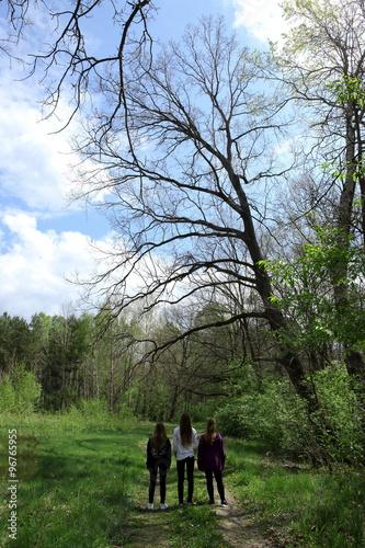 Dzieci w lesie - 96765955