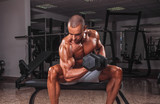 Handsome man doing bicep curl in the gym.