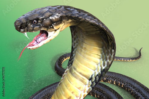 Fotografía  Close-Up Of 3D king Cobra The world's longest venomous snake on green