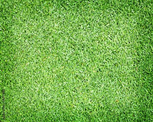 Foto op Plexiglas Groene Golf Courses green lawn