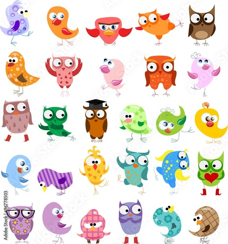 Canvas Prints Creatures Cute birds in vector. Cartoon set