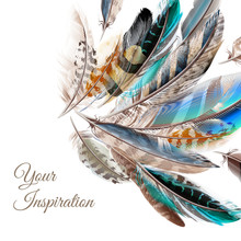 Fashion  Vector Background With Blue White And Brown  Feathers I