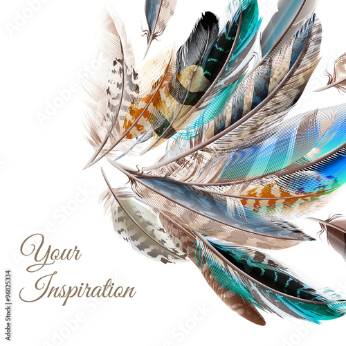 Fashion  vector background with blue white and brown  feathers i Wallpaper Mural
