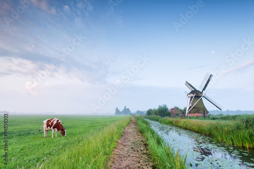 Deurstickers Molens cow grazing on pasture by river and windmill
