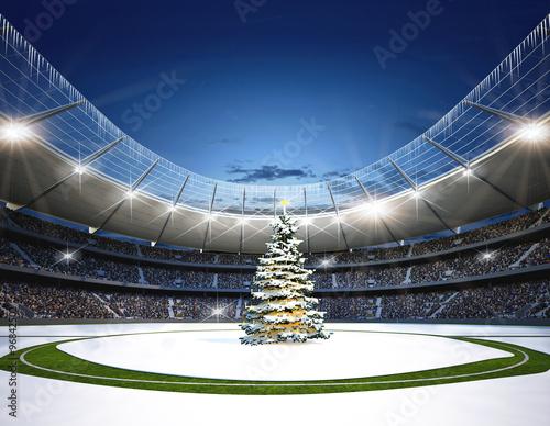 Fototapeta  Stadion Mittellinie Winter