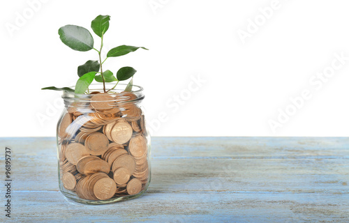 Fotografía  Plant growing in bowl of coins on a table isolated on white