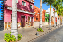 Colourful Houses And Palm Tree...
