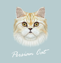 Persian Cat Purebred Animal Cute Face. Vector Funny White Tabby Vanilla Cat Head Portrait. Realistic Fur Portrait Of Green Eyes White Persian Kitten Isolated On Blue Background.