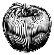 Vintage Woodcut Apple
