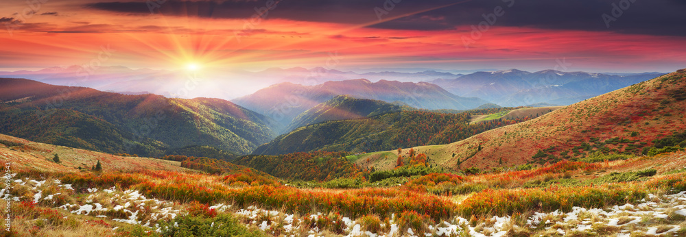 Fototapety, obrazy: Golden colors of autumn