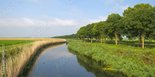 Poster Channel Canal through a rural landscape in summer