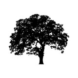 Beautiful vector tree illustration silhouette icon for websites
