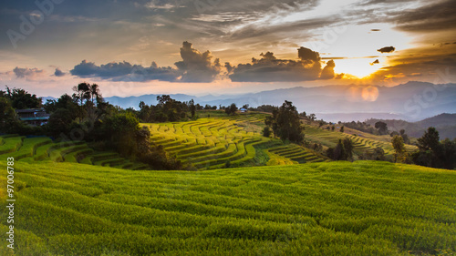 Poster Rice fields Rice terraces