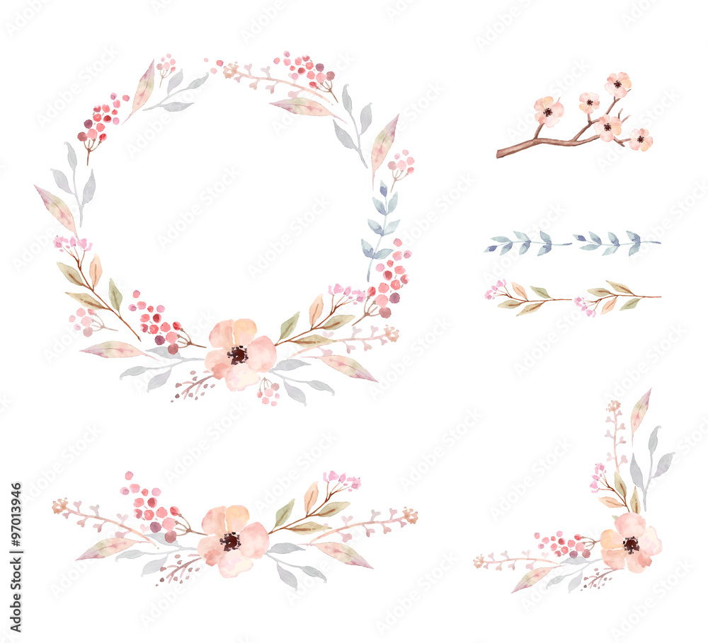 Fototapeta Floral Frame Collection. Set of cute watercolor flowers.