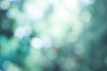 Natural Blur Bokeh Background