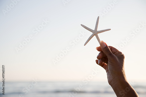 Photo Woman holding a starfish