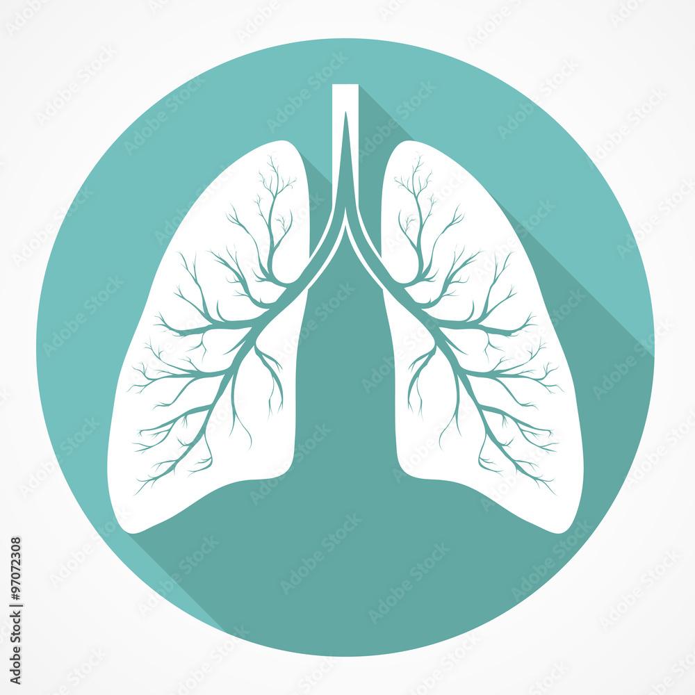 Fototapeta Human Lung flat icon