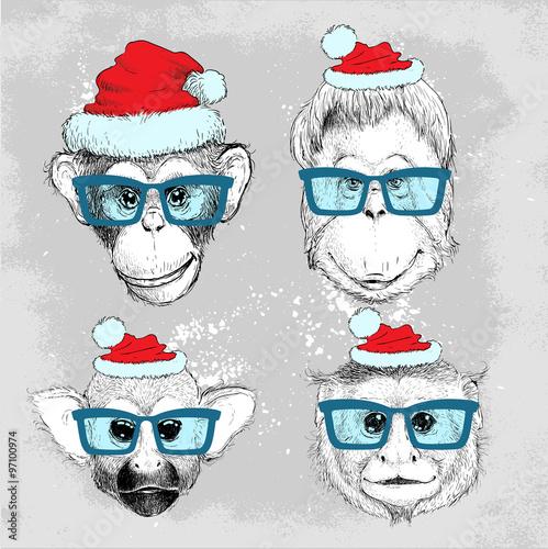 hipster-malpa-twarze-zestaw-z-niebieskie-okulary-i-kapelusz-bozego-narodzenia-wesolych-swiat-i-szczesliwego-nowego-roku-ilustracji-wektorowych-na-projekt-plakatu-plakaty-drukowanie-mody-i-wlokienniczych
