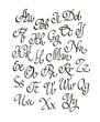 Vector handwritten calligraphic font