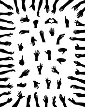 Black Silhouettes Of Various P...