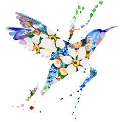 Obraz hummingbird multicolored on white background