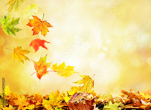 Stickers pour portes Orange eclat Pile of autumn leaves on nature background