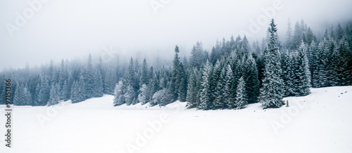 Valokuvatapetti Winter white forest with snow, Christmas background