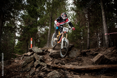 Photo Downhill racer