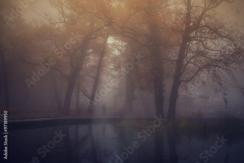 Autumn park on a foggy day