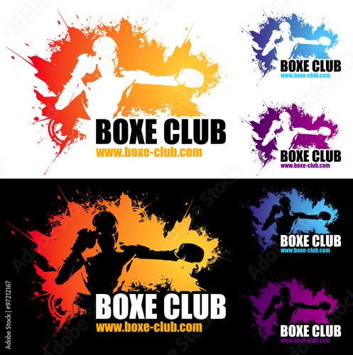 Fotografie, Tablou  logo boxe club