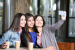 Attractive girls together take selfie sitting in cafe