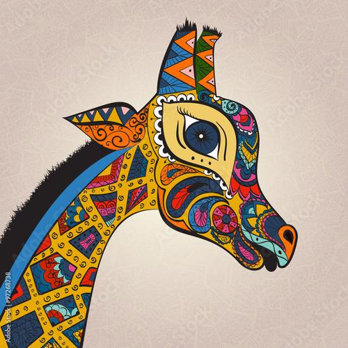 Photo  Beautiful adult Giraffe