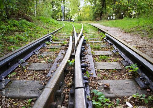 Fotografie, Obraz  The two narrow-gauge railway tracks, divergent tracks